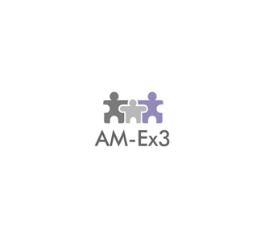 AM-EX3